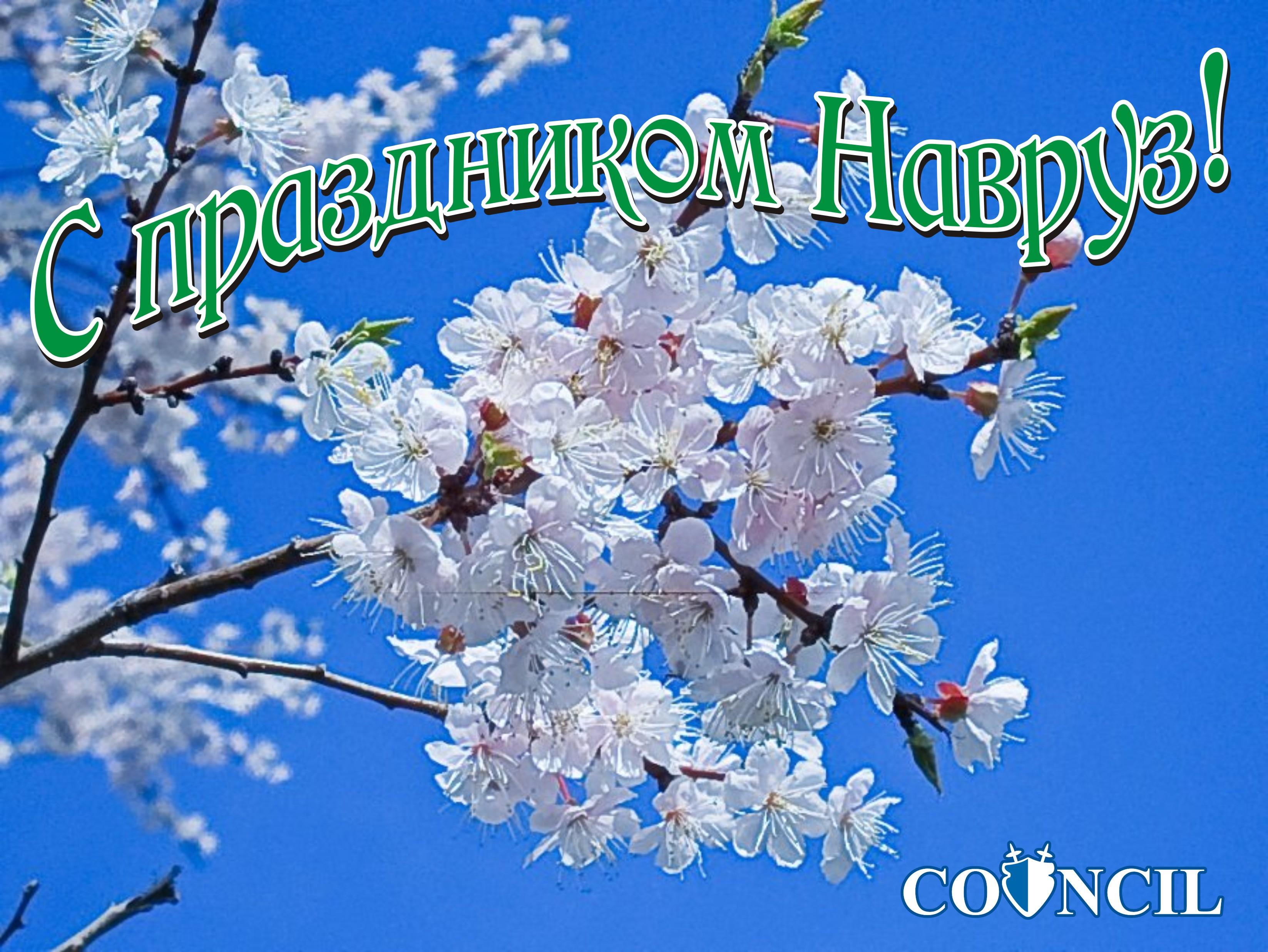 навруз муборак поздравить твой праздник профессиональный